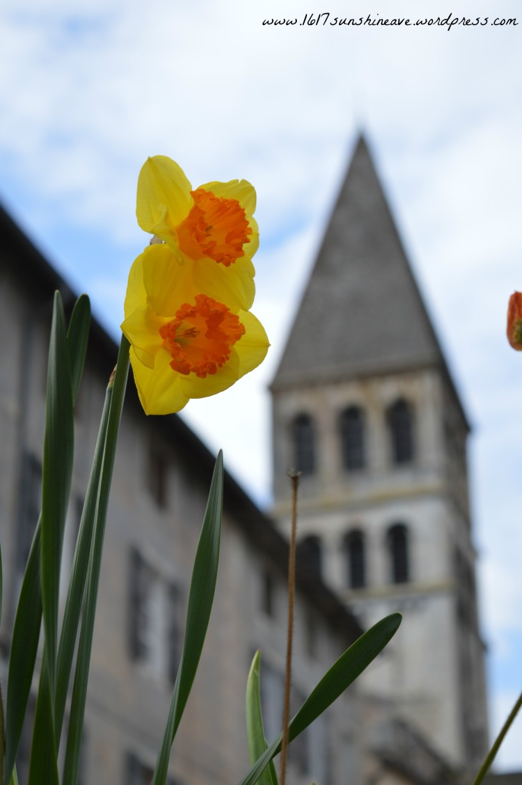 tournus flower church france.jpg