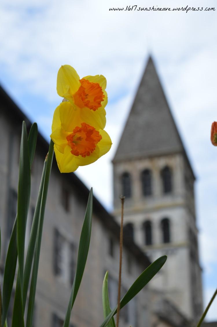 tournus flower church france.jpg