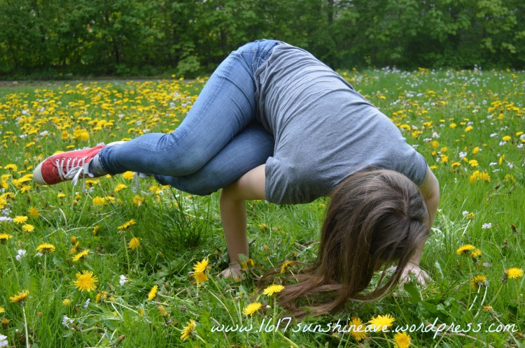 side bakasana crow pose yoga.jpg