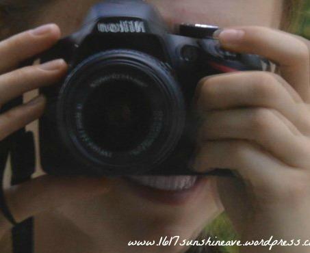 photographing 1617 sunshine ave