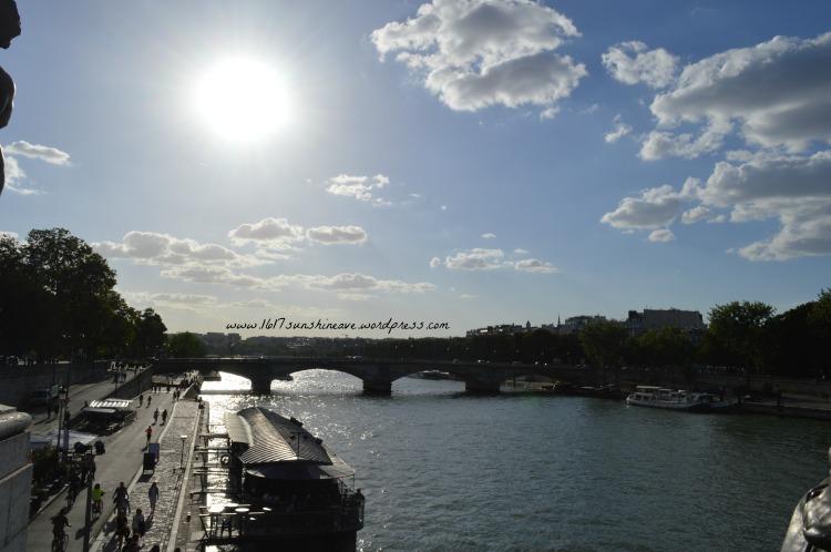 la seine paris pont d´alexandre 3 france
