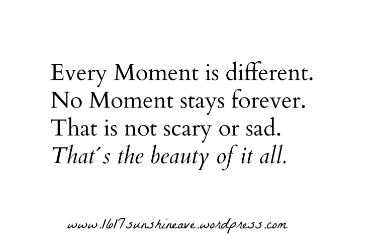 hot-to-live-in-the-moment-quote-every-moment-is-different-thats-the-beauty-of-it-1617-sunshine-ave